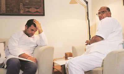 NCP Chief Sharad Pawar does not think ally Rahul Gandhi is fit to lead India: Here is what he said in a media interview