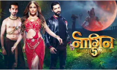 Surbhi Chandna and Sharad Malhotra's Naagin 5 to go off air in February? | Bollywood Bubble