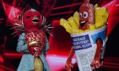 All the best theories ahead of The Masked Singer's grand finale