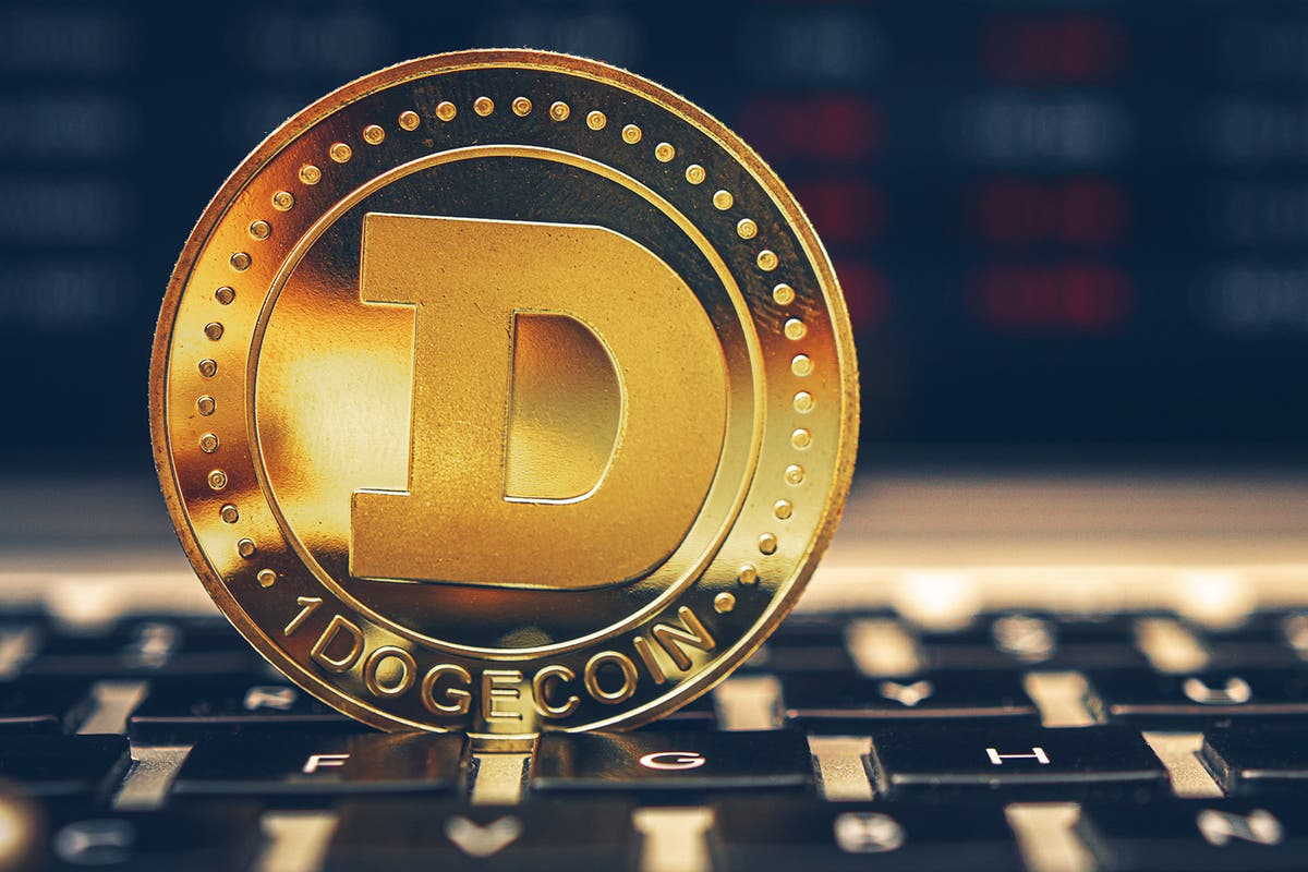 Dogecoin, the joke cryptocurrency loved by Elon Musk and growing faster than Bitcoin