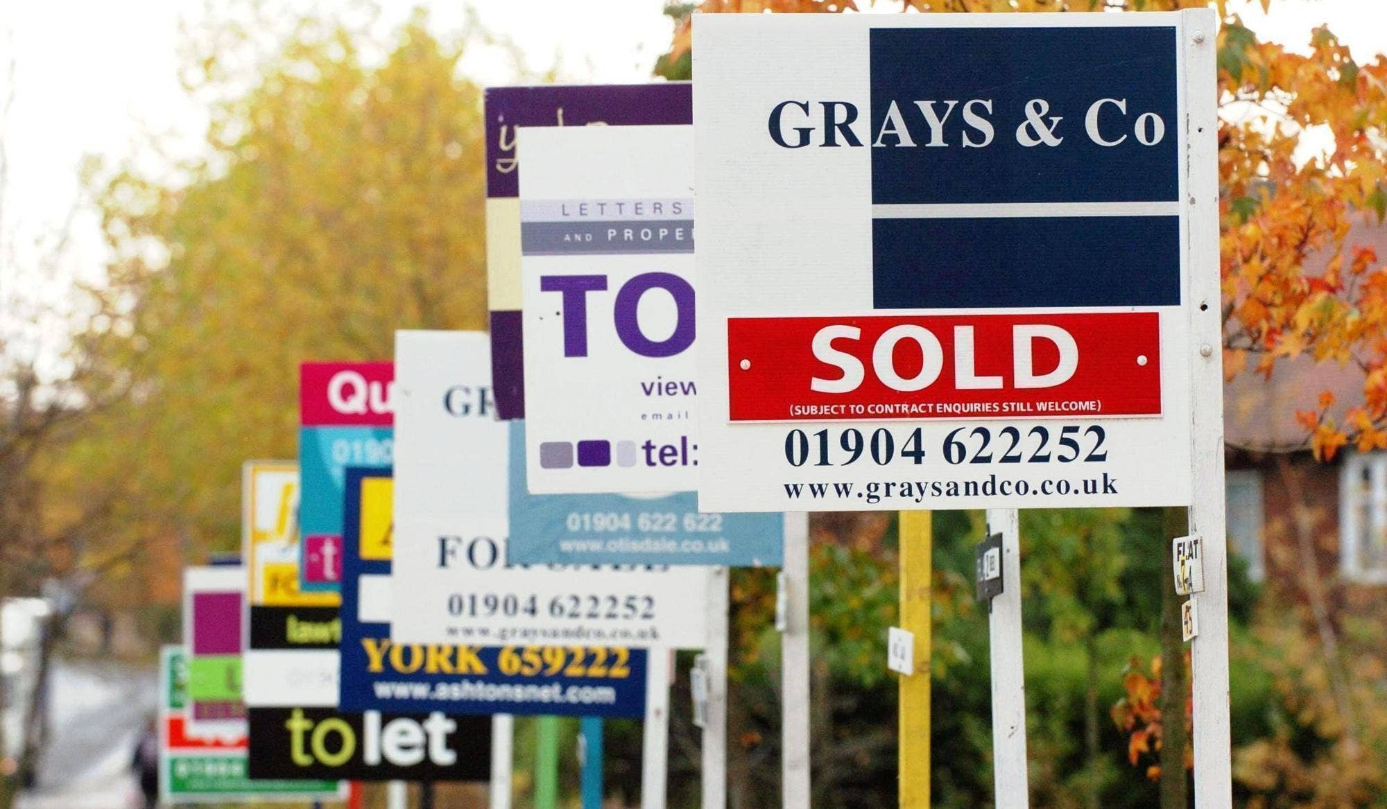 Home sales leapt 24% in January as buyers rushed to meet the stamp duty holiday deadline