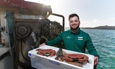 Morrisons snaps up Cornish seafood wholesaler Falfish