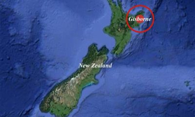 Strong quake shakes New Zealand but tsunami threat eases