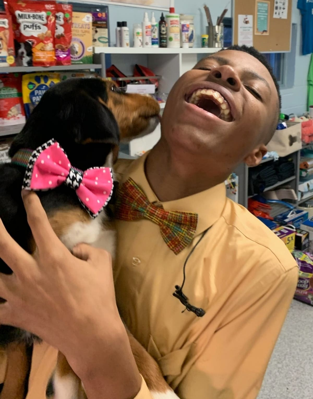 Teenager makes bow ties for shelter dogs to help them get adopted