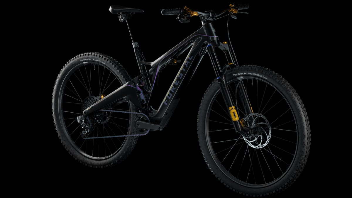 Forestal new ebike MTB