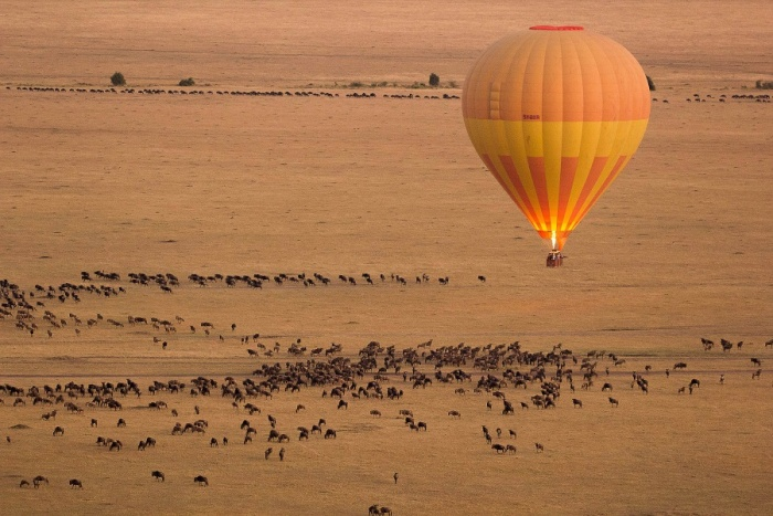 Kenya Tourism Board takes fresh European representation