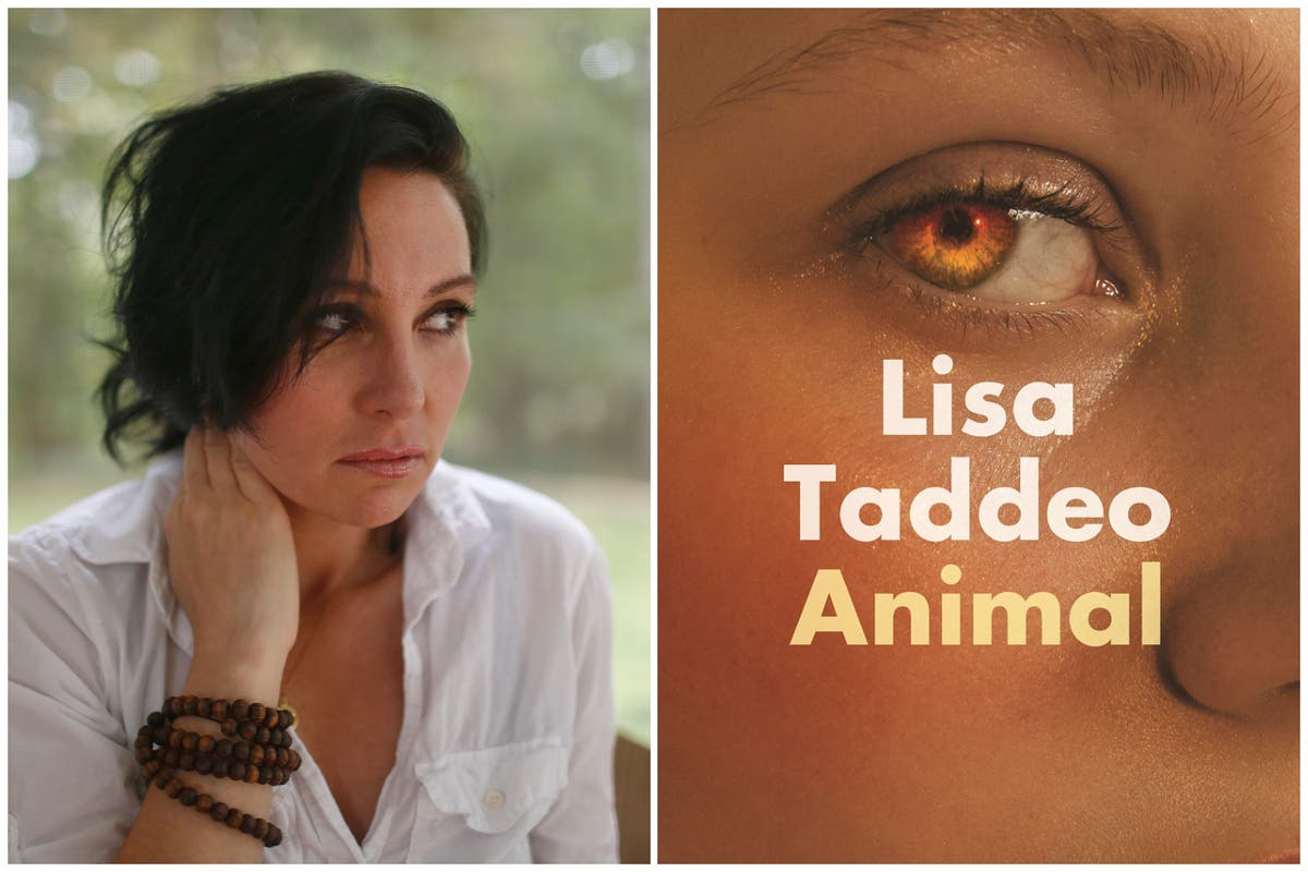 Animal by Lisa Taddeo review