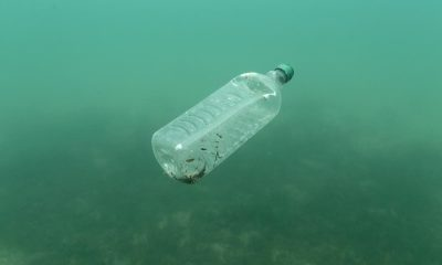Half of plastic rubbish in the sea is from takeaways - university study