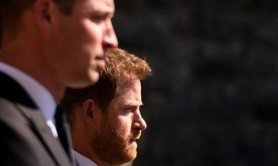 Harry and William scale back invites to Diana tribute due to Covid