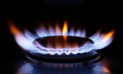 Avro Energy and Green collapse as gas price crisis continues